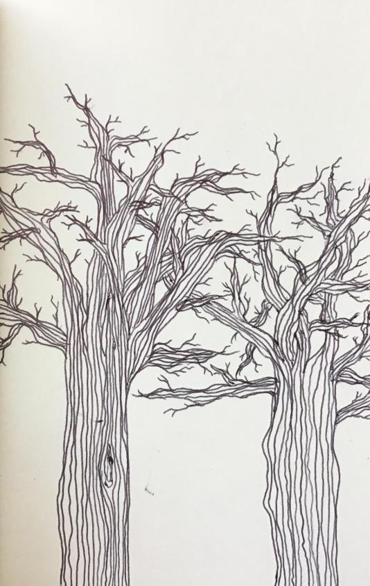 BäumeImDialog.JPG
